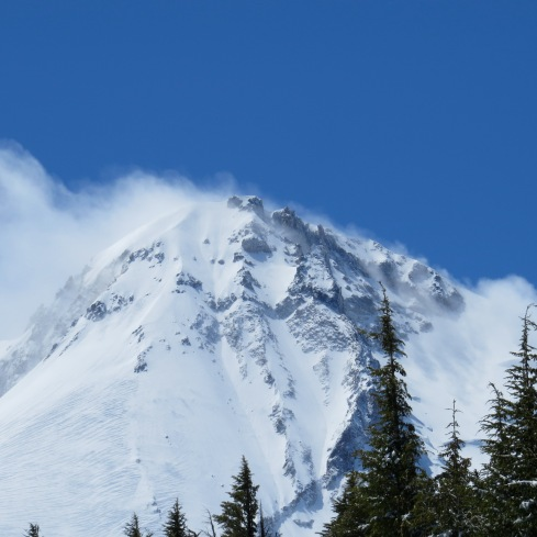 North face of Mt. Hood