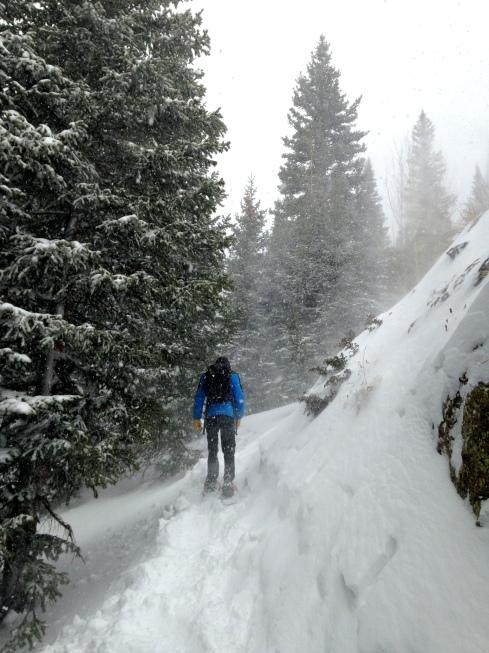 Tubbs Snowshoes Alps XL Trekking through Rocky Mountain National Park
